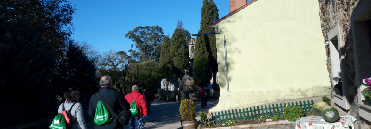 Caminata Inaugural Camino Clean- Saliendo de Melide