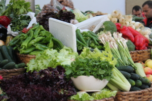 Día mundial del Medio Ambiente siendo Ecoperegrino - Productos locales